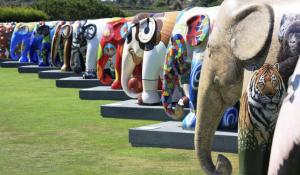 18 juni feestelijke opening Elephant Parade