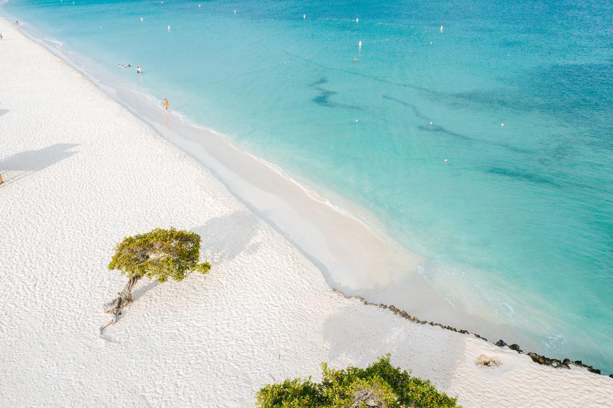 Iconische foto Aruba - Eagle Beach
